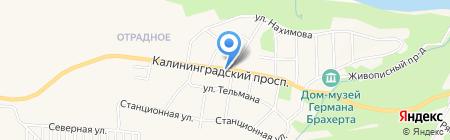 Магазин продуктов на карте Светлогорска