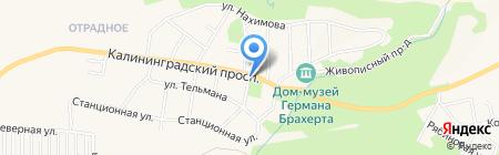 Юлия на карте Светлогорска