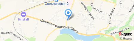 Отдел судебных приставов Светлогорского городского округа на карте Светлогорска
