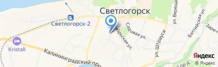 ВВС-НЛО на карте Светлогорска