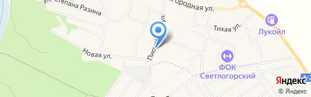 ДЮСШ на карте Светлогорска