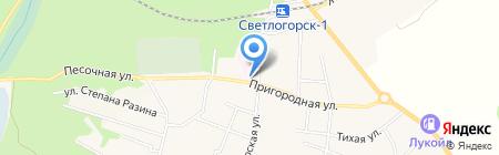 Детский противотуберкулезный санаторий на карте Светлогорска