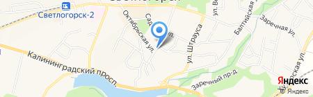 Единая Россия на карте Светлогорска