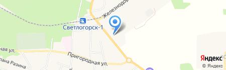 Балтавтотранссервис на карте Светлогорска