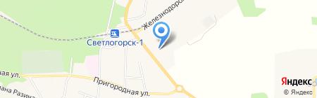 Магазин бытовой техники на карте Светлогорска
