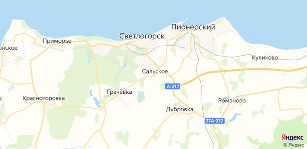 Сальское на карте