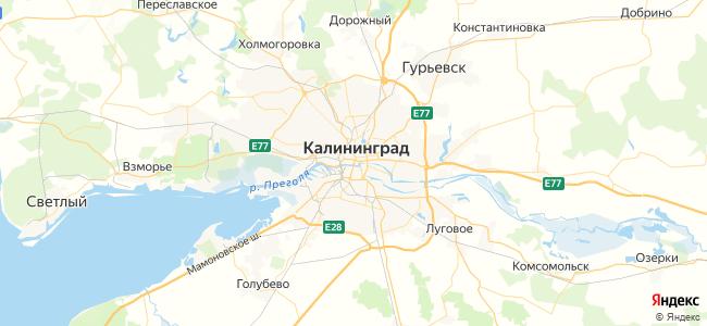 7 автобус в Полесске