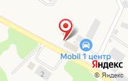 Автосервис Шмидт в Гурьевске - Безымянная, 16: услуги, отзывы, официальный сайт, карта проезда