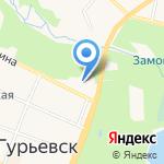Гнездо аиста на карте Гурьевска