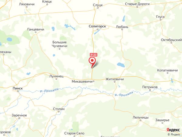 поселок Большие Стеблевичи на карте