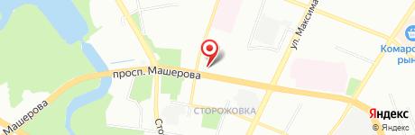 Агентство курсовых Ботаноф агентство по написанию студенческих  Карта