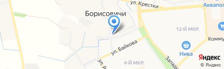 Веселый тигренок на карте Борисовичей