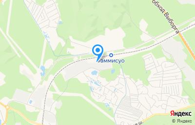 Местоположение на карте пункта техосмотра по адресу Ленинградская обл, г Выборг, ул Таммисуо