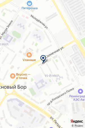 РЕМОНТ БЫТОВЫХ МАШИН И ПРИБОРОВ на карте Соснового Бора