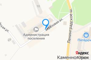 Двухкомнатная квартира в Каменногорске Берёзовая аллея