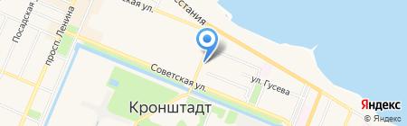 Большая черепаха на карте Санкт-Петербурга