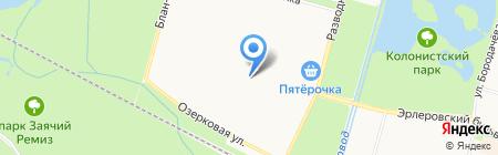 Удачный выбор на карте Санкт-Петербурга