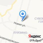 Петродворцовая электросеть на карте Санкт-Петербурга