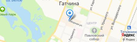 Часы на карте Гатчины