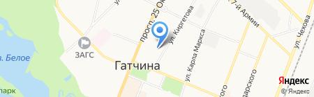 Зоомагазин на ул. Киргетова на карте Гатчины