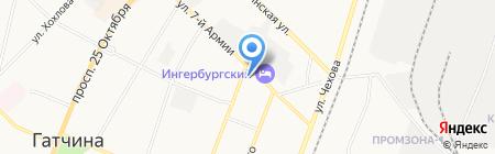 Гудвин на карте Гатчины
