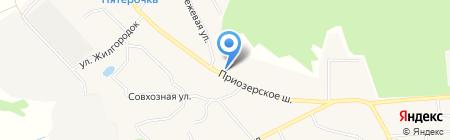 Шиномонтажная мастерская на Приозерском шоссе на карте Агалатово