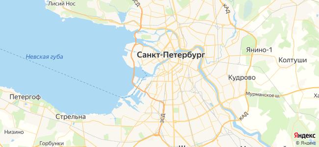 169 маршрутка в Санкт-Петербурге