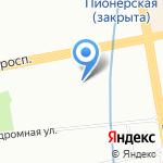 Дикая кошка на карте Санкт-Петербурга