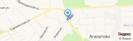 Шиномонтажная мастерская на Приозерском шоссе (Всеволожский район) на карте Агалатово
