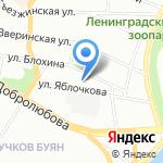 Фионит на карте Санкт-Петербурга