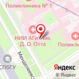 НИИ акушерства и гинекологии им. Д.О. Отта