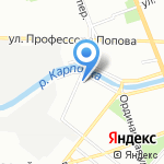 Муха на карте Санкт-Петербурга