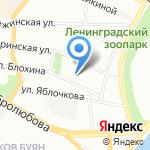 Master IELTS на карте Санкт-Петербурга