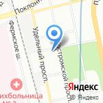 Shelby на карте Санкт-Петербурга