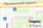 Схема проезда до компании Магазин живого-пенного в Санкт-Петербурге