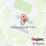 Гимназия №114, Выборгский район