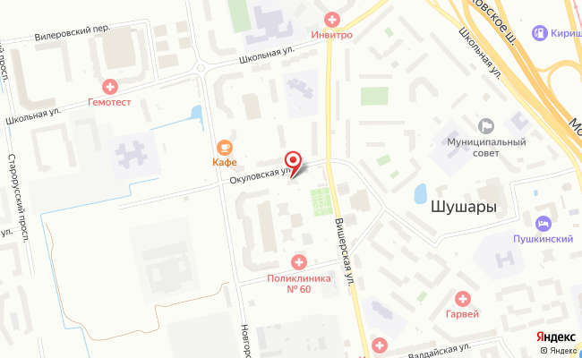 Карта расположения пункта доставки Шушары Окуловская в городе Шушары