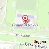 Гимназия №227, Фрунзенский район