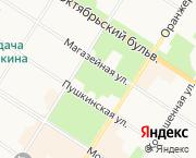 Пушкин, Магазейная 66