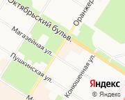 СПБ,Пушкин,ул.Оранжерейная 17