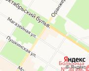 Пушкин,Жуковско-Волынская ул.