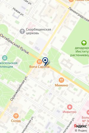 САЛОН ЦВЕТОВ АВА на карте Пушкина