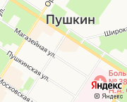 Пушкин,Конюшенная ул. 38\37