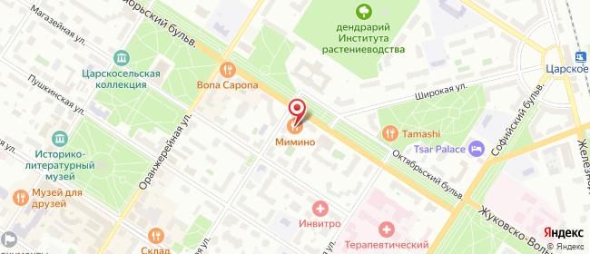 Карта расположения пункта доставки СИТИЛИНК в городе Пушкин