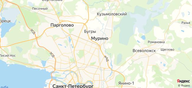 205а маршрутка в Никольском