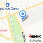 ДЮСТШ на карте Санкт-Петербурга