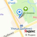 Шиньон на карте Санкт-Петербурга