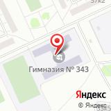 Гимназия №343, Невский район
