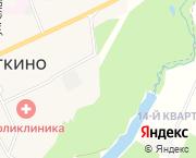 д.Новое Девяткино