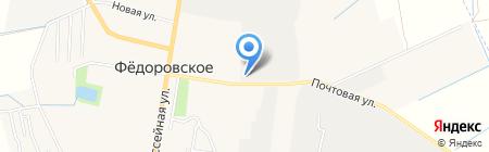 Шиномонтажная мастерская на Почтовой (Тосненский район) на карте Фёдоровского